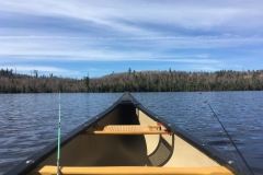BWCA Canoeing