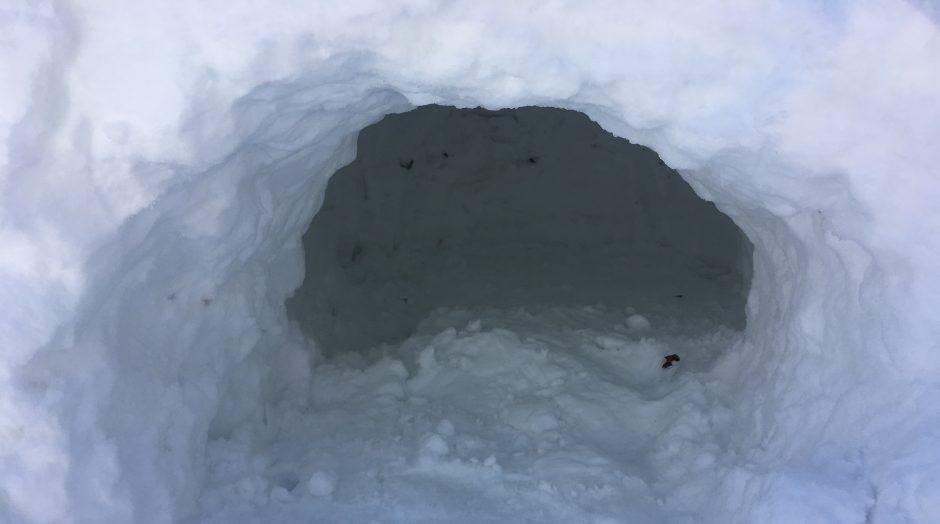 quinzee, quinzhee, snow shelter